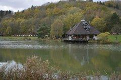 Waldsee-Rieden3.jpg